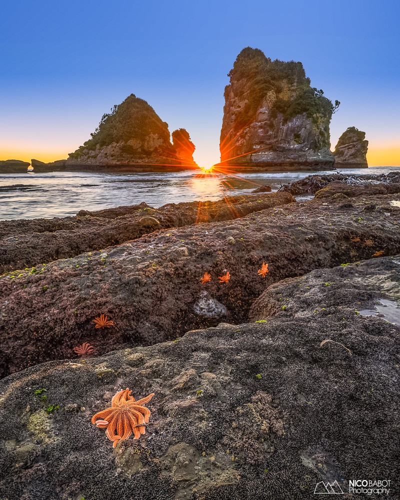 Guide Motukiekie Beach - Seastar and sunset 2 - Photo by Nico Babot