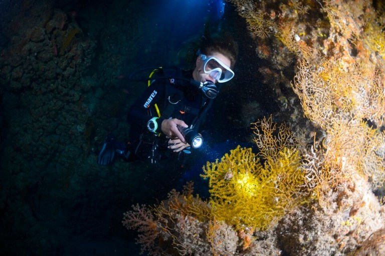 Night and Limited Visibility Diving Course in Bali