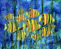 Deep Sea Butterflies