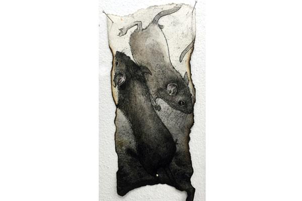 Mice on Burnt Paper