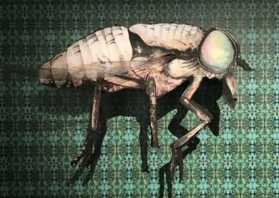 Giant Horsefly