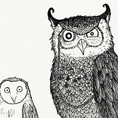 Parliament of Owls Pen and Ink Illustration © Nicola L Robinson