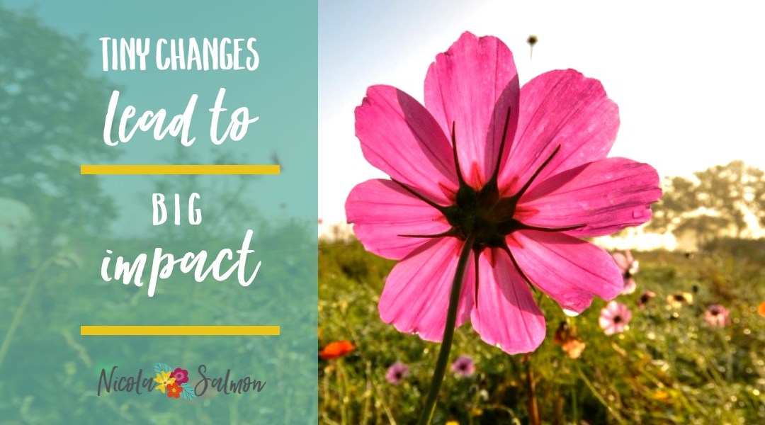 Tiny changes lead to big impact