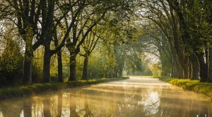 Dole, Canal du Rhône au Rhin