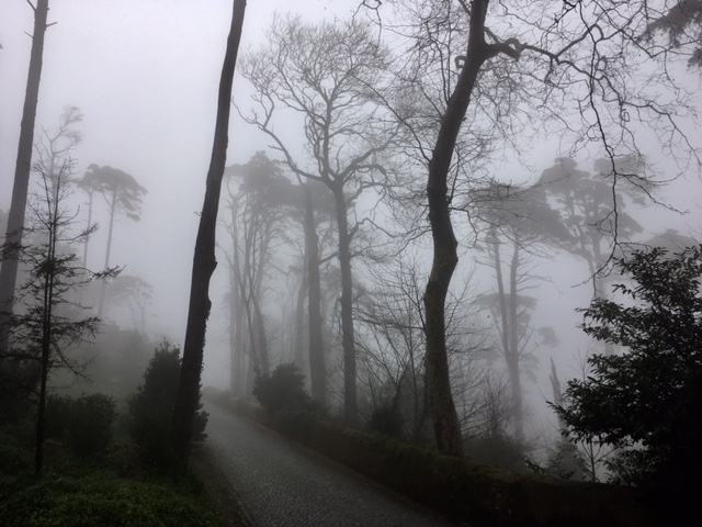 Sintra, Jardin de Pina... dans la brume