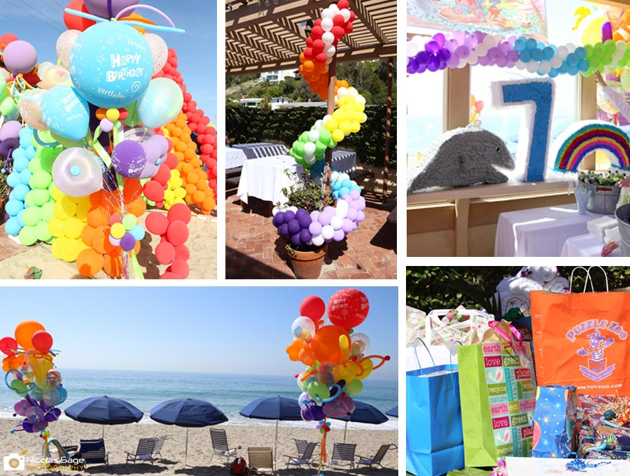 malibu birthday party photographer