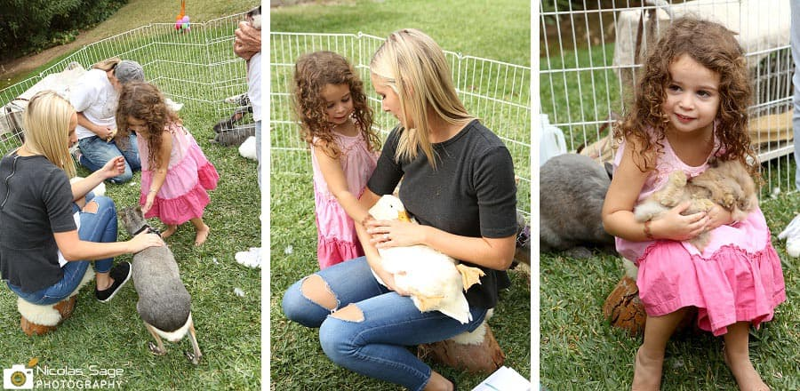 petting zoo birthday party los angeles