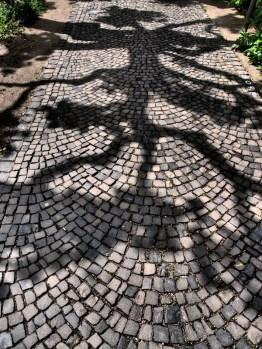 Shadows of Frankfurt