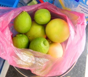 My rentor brought me a bag of lemons from his garden