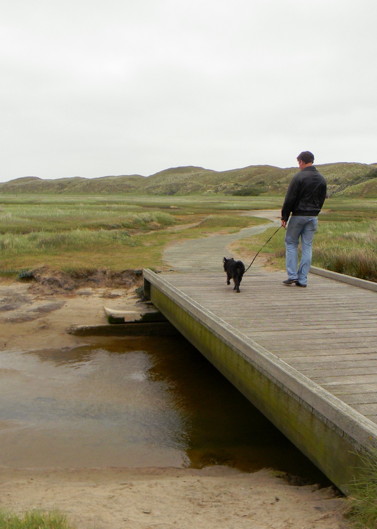 dad-and-dog