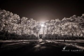 Boboli_gardens_italian_wedding_rehearsal001