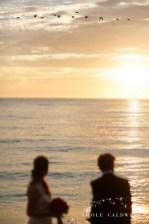 surf and sand resort intimate wedding laguna beach nicole caldwell phopto031