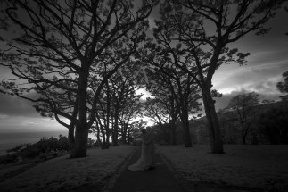 wedding_wayfarereschapel_nicole_caldwell_infrared