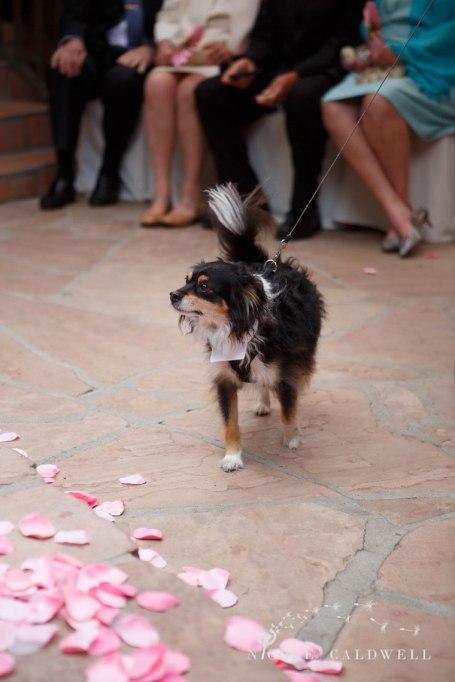 wedding-tivoli-too-laguna-beach-nicole-caldwell-photo-06