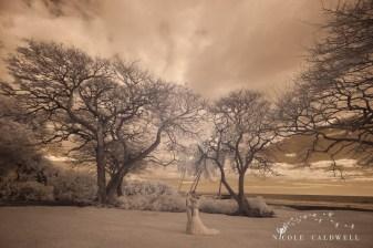 weddings on maui olowalu plantation house nicole caldwell photo 17