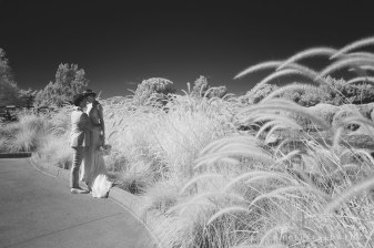 temecula creek inn wedding golf course infrared