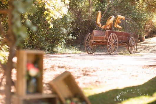 temecula creek inn wedding phtographer