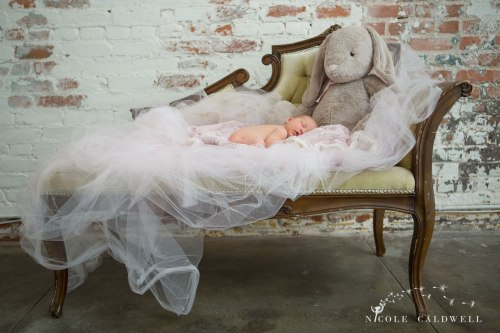 newborn photographer orange county