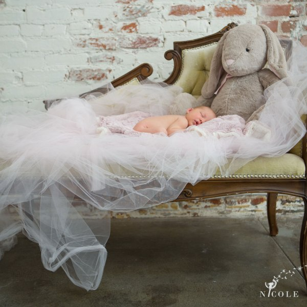 newborn photographer orange county