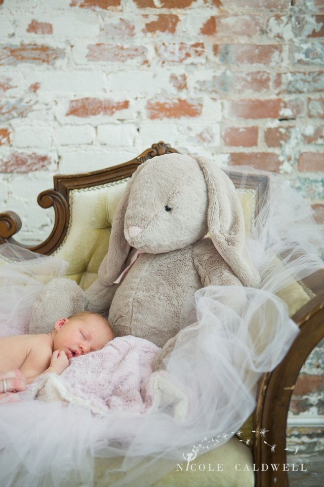 oarnge-county-photo-studio-newborn-photographer012