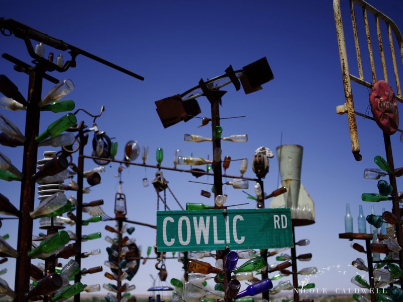 pentax-645z-at-Elmers-Bottle-Tree-Ranch-route-66-07