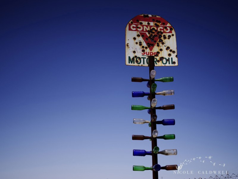 pentax-645z-at-Elmers-Bottle-Tree-Ranch-route-66-24