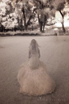 weddings-temecula-creek-inn-stonehouse-historical-venue-n-icole-caldwell-studio-96