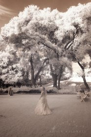 weddings-temecula-creek-inn-stonehouse-historical-venue-n-icole-caldwell-studio-97