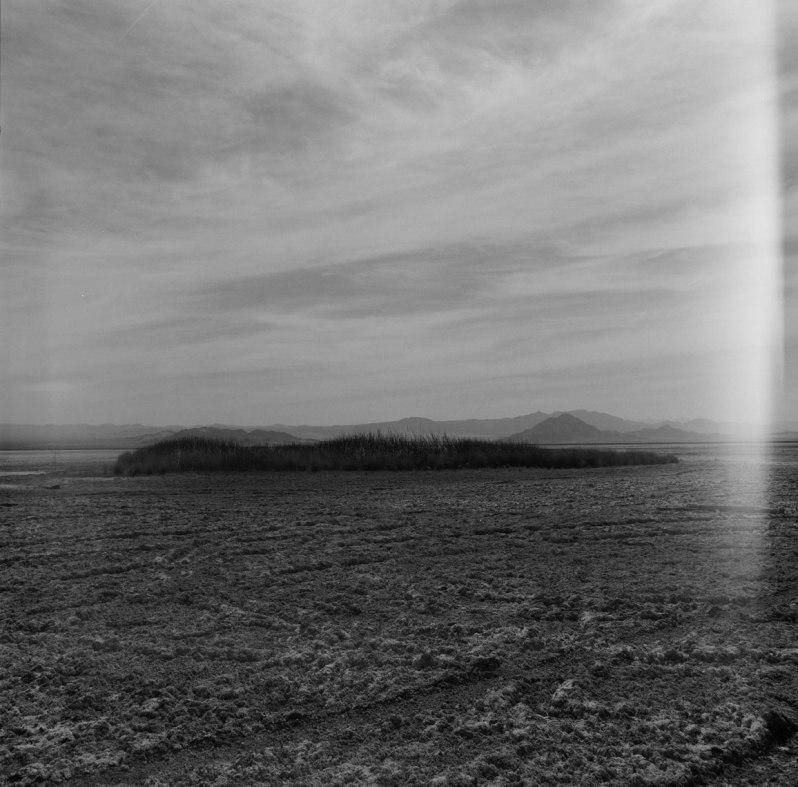 zzyzxRoad-photos-nicole-caldwell-hasselblad-film-photography08