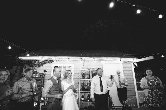 backyard-wedding-arts-district-santa-ama-wedding-photos-nicole-caldwell-65