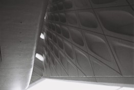 the_braod_museum_los_angeles_film_nicole_caldwell26