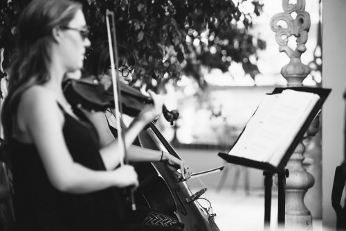 French Estate wedding photographer orange violin player