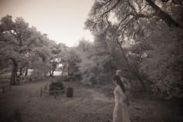 temecula creek inn weddings nightime ceremony jewish 18