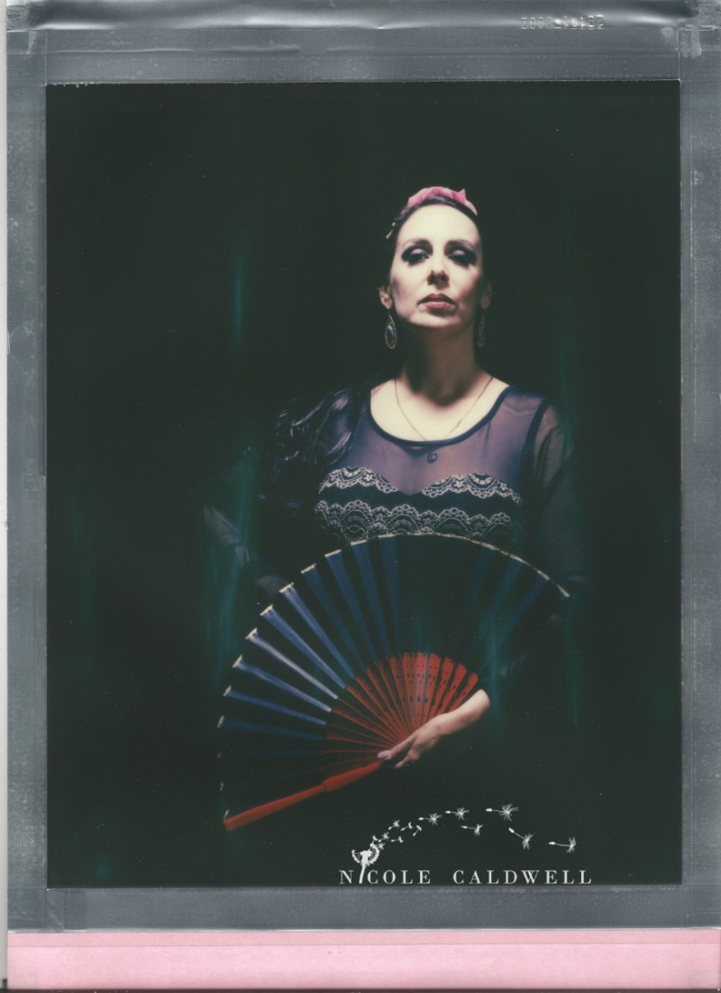 8 x 10 color poalroid impossible project film nicole caldwell 78
