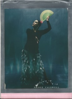 8 x 10 color poalroid impossible project film nicole caldwell 79