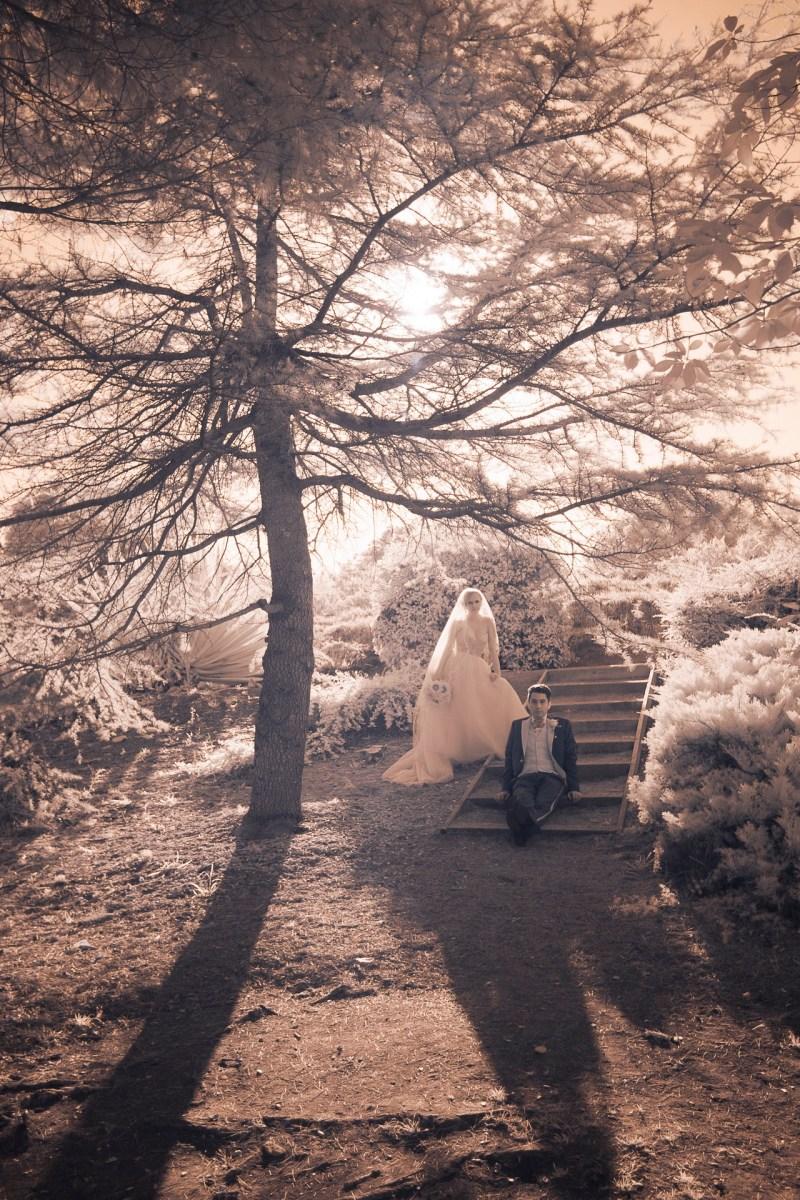 south-coast-botanical-gardens-weddings-palos-verdes-by-nicole-caldwell-20