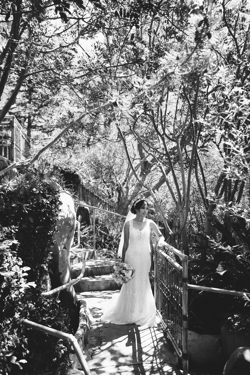 seven degrees wedding laguna beach photographer nicole caldwell