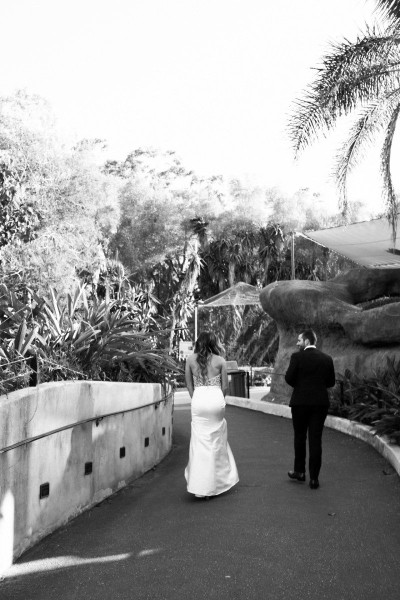 santa barabar zoo wedding and engagement pictures by nicole caldwell 49