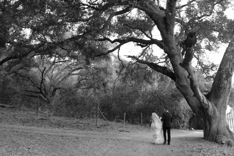 temecula creek inn weddings romatic rustic photojournailism nicole caldwell 52
