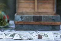 temecula creek inn weddings stonehouse by nicole caldwell photography studio 73