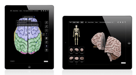 Brain app screen shots