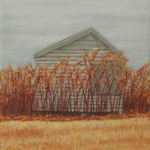 Autumn Colors, 2010