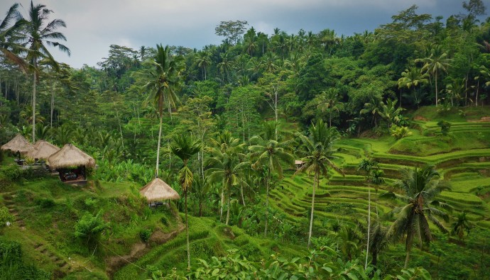 bali spiritual journeys