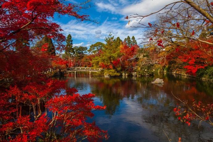 autumn holiday destinations japan