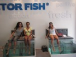 Doctor Fish Spa