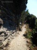 Treacherous path