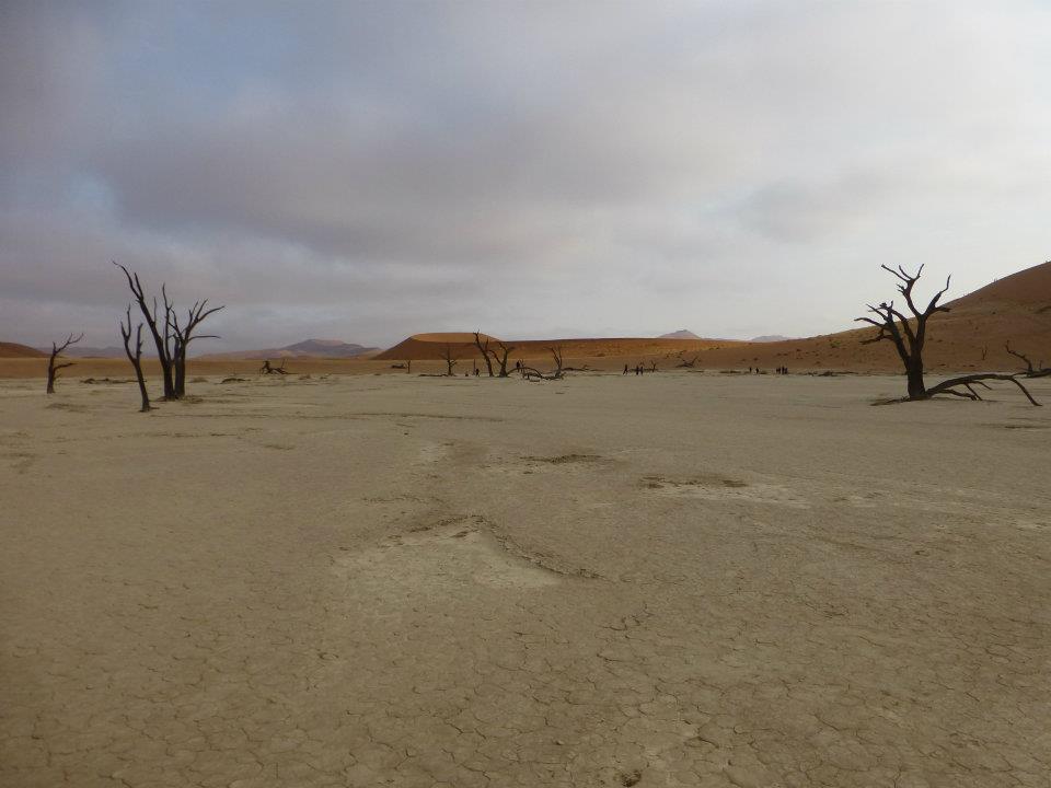dead-vlei-namibia