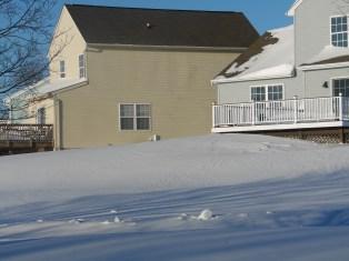 snowyhouses