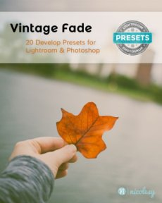 Vintage Fade Preset Packs