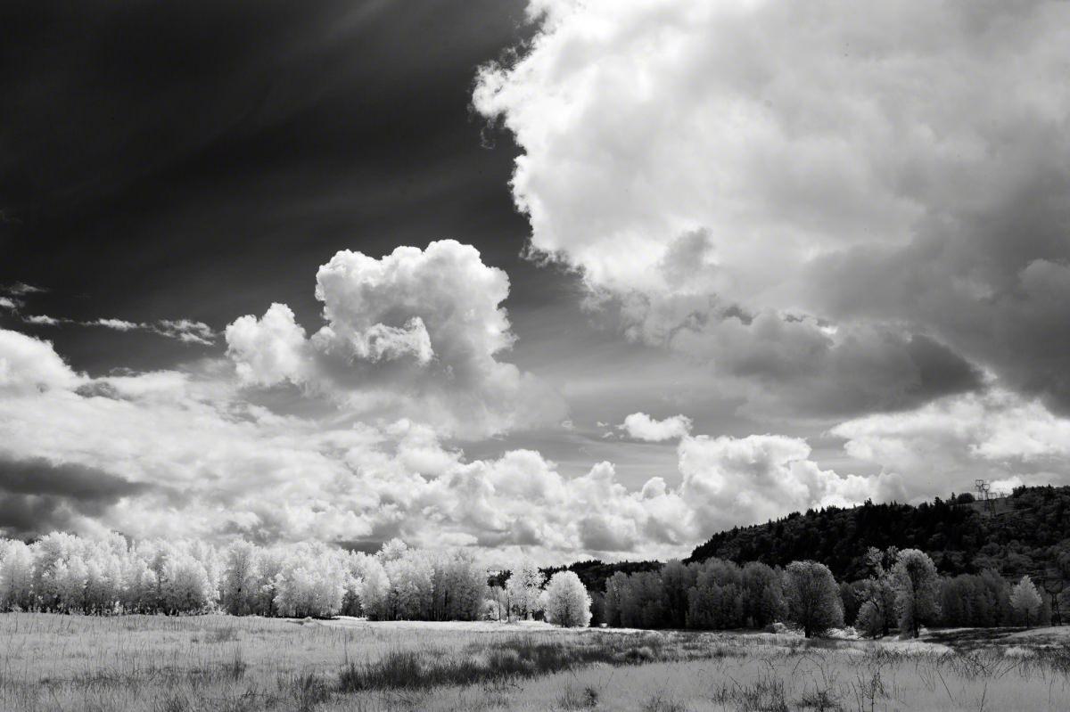 thousand-acres-0140_Edit_140519-4